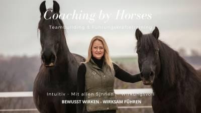Führungskräftetraining & Teambuilding mit Pferden – EQS-Methode by Alexandra Lohr